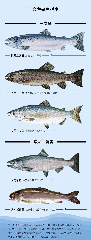 吃鱼套路深!罗非鱼冒充鲷鱼虹鳟鱼冒充三文鱼巴沙龙利鱼油鳕鱼…