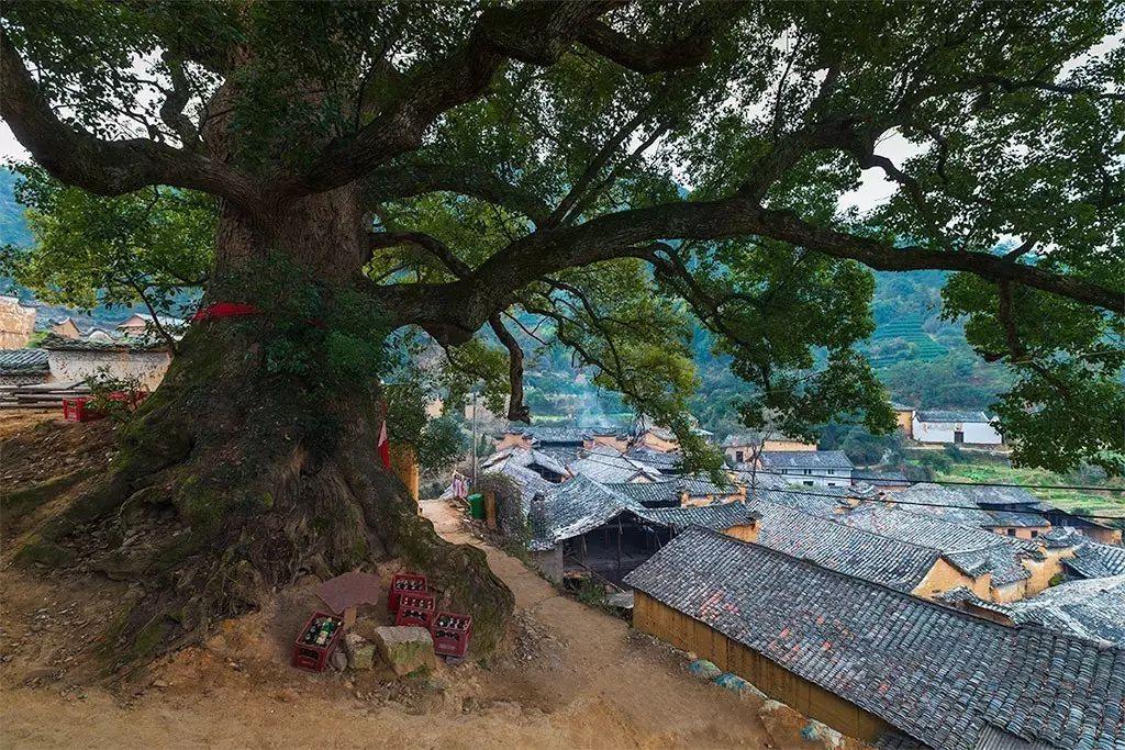 江南最后的秘境,有着不输西藏的绝美,却鲜有人知!