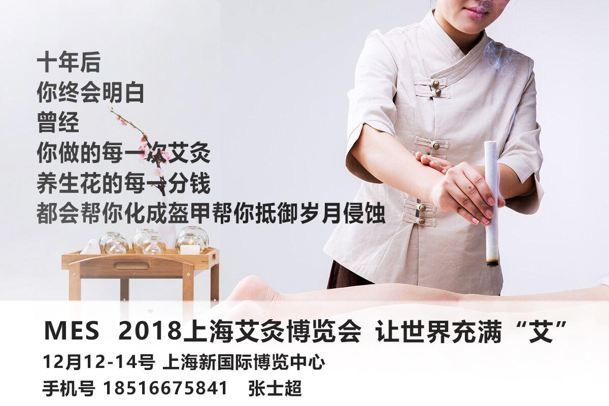 艾灸摄逝世新风气、2018上海MES艾灸摄逝世铺览会