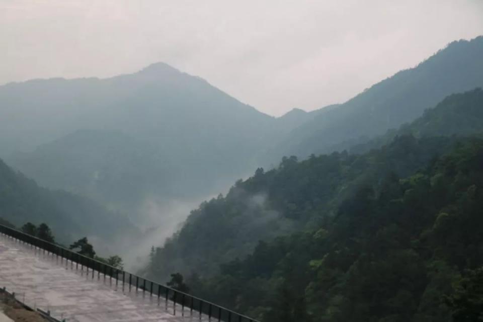 在庆元巾子峰看云看树看瀑布