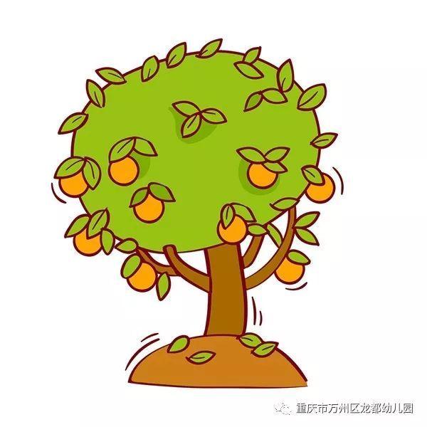 橘树儿童简笔画
