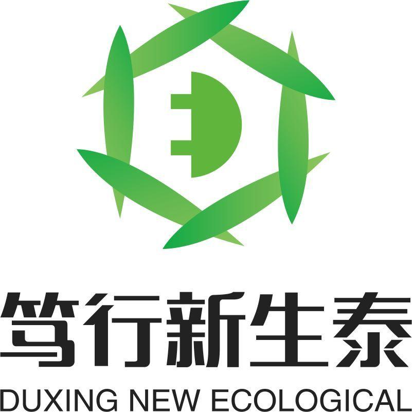 陕西杜兴鑫盛泰-专业销售和运营新能源汽车