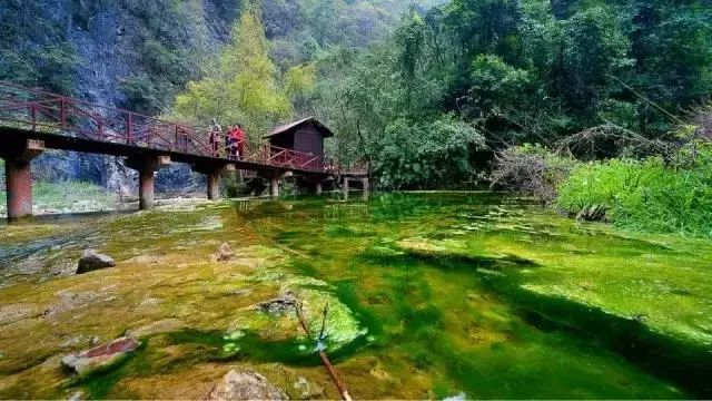 中坝大峡谷位于石泉县境内的汉江南侧,这里地势高峻,水流湍急,奇峰秀
