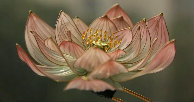 白领辞职开花店,每月靠卖丝印花赚8000元-第2张图片