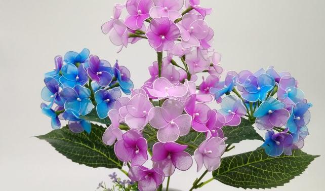 白领辞职开花店,每月靠卖丝印花赚8000元-第3张图片