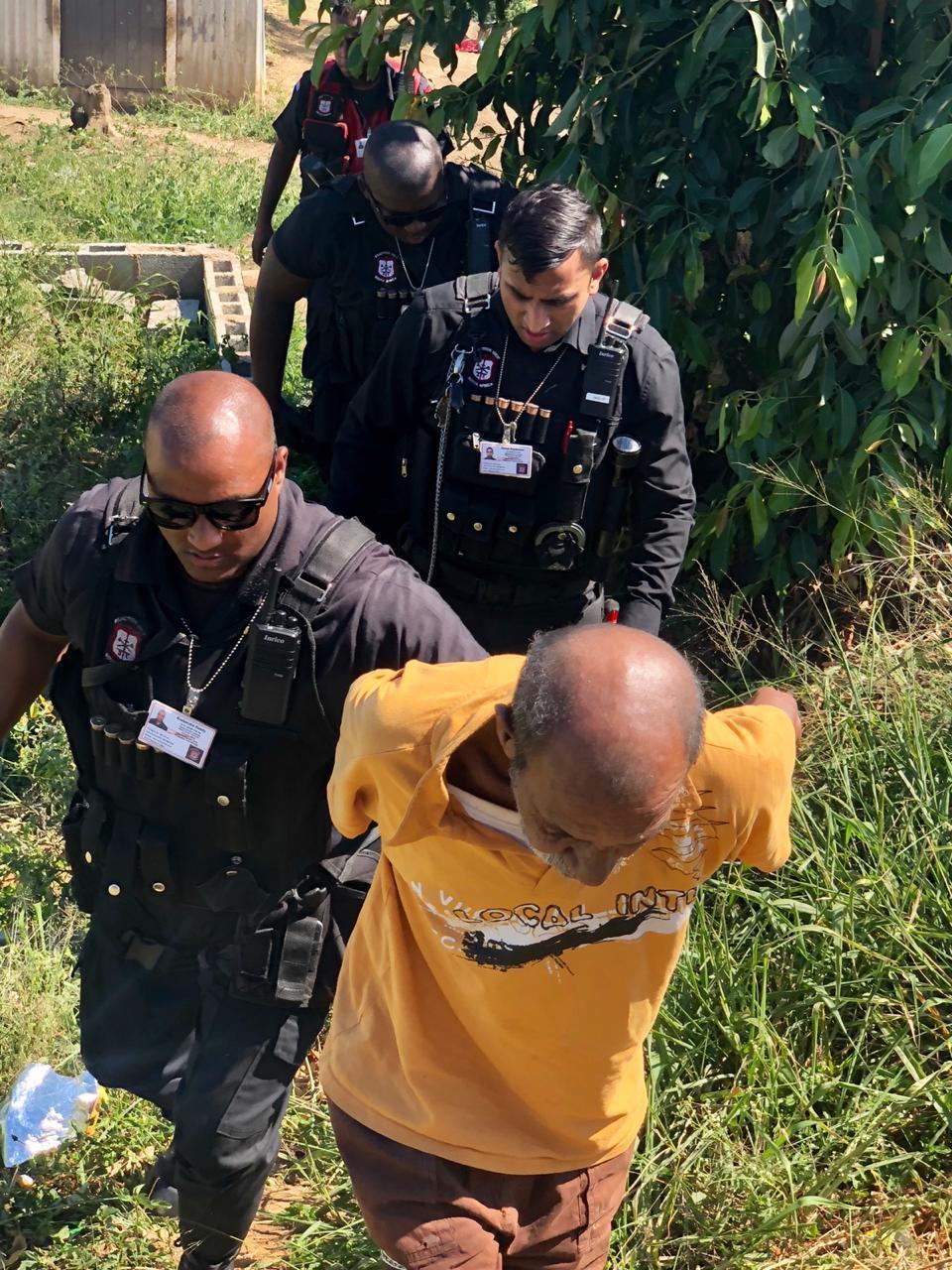 南非奇葩男子因为猥亵邻居家的猫而被逮捕
