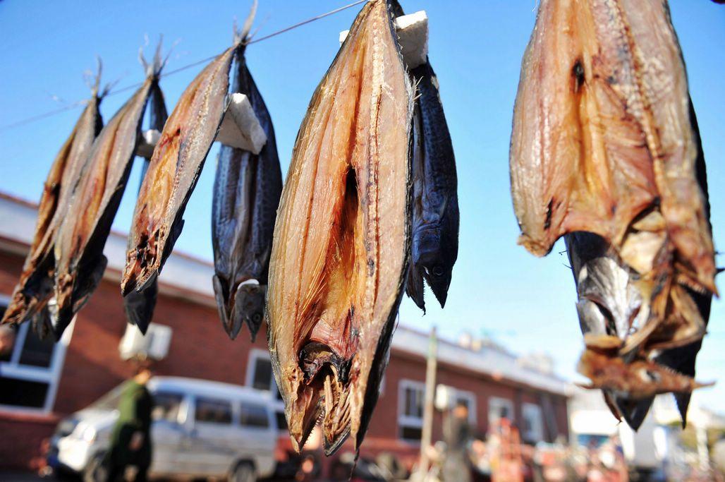 气温在不断降低,还有不到10天就要立冬,冬天就要到来了。时下正是晾晒鱼干的季节,晒鱼干是在冷冻设备出现之前渔民对捕捞过多的海鲜一种存储方法,将新鲜的海鲜鱼类用盐腌制2小时后,用清水冲洗干净,放在太阳底下晒干储存,以便在冬季食用。现在,晾晒的鱼干成为风味美食,还能增加渔业附加值。图为新鲜鲅鱼,晾晒鱼干的好原料。 下面就跟随小编一起学习晾晒鱼干吧。首先选择原料,鲅鱼、墨鱼、舌头鱼等等,基本所有海鲜鱼都可以晾晒。在没有冰箱、冰柜和冷库时,晾晒鱼干是保存海鲜的最好办法。将鲅鱼从背部用刀剖开,一分为二。这个过程需要