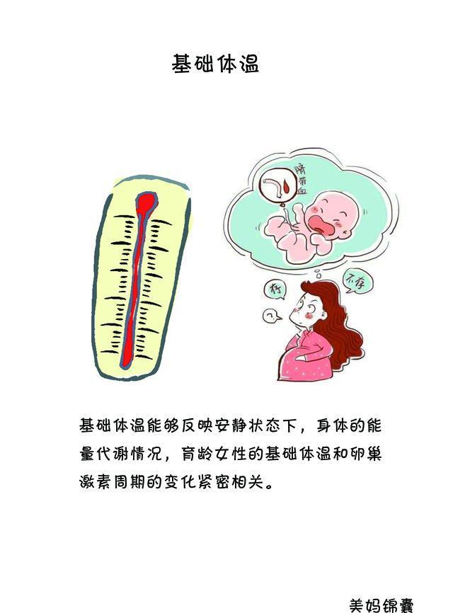 準媽媽的基礎體溫