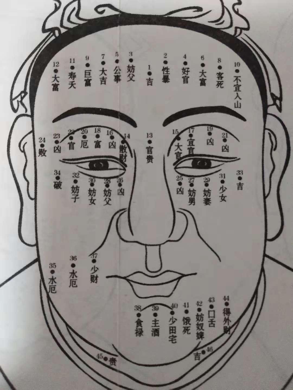 极准的观面识人,麻衣神相(6)——相眉(上)