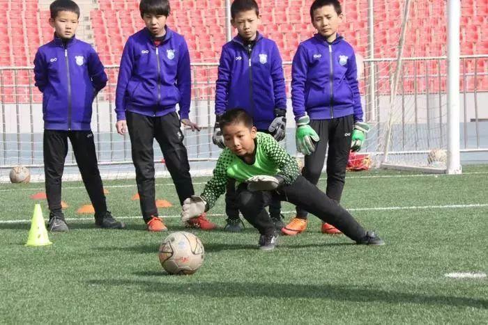 推荐丨《改革开放·青海体育四十年》●校园体育活力十足