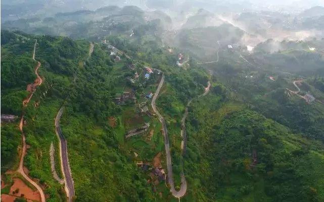 """有碧绿清新的茶山 一路风景美不胜收 海拔在1000米左右 素有""""川东小"""