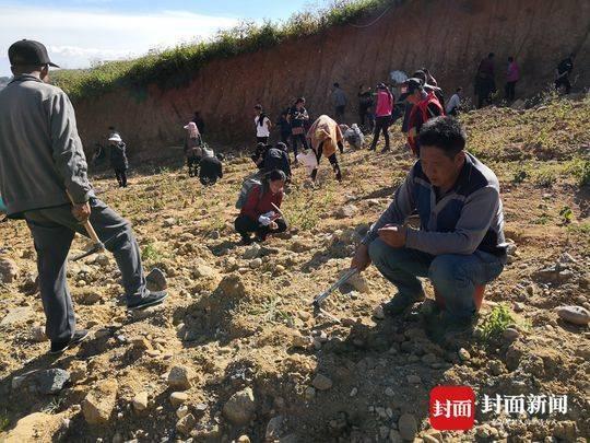 """现实版""""疯狂的石头"""":西昌一弃土场上千人组团连夜挖""""玉石"""""""
