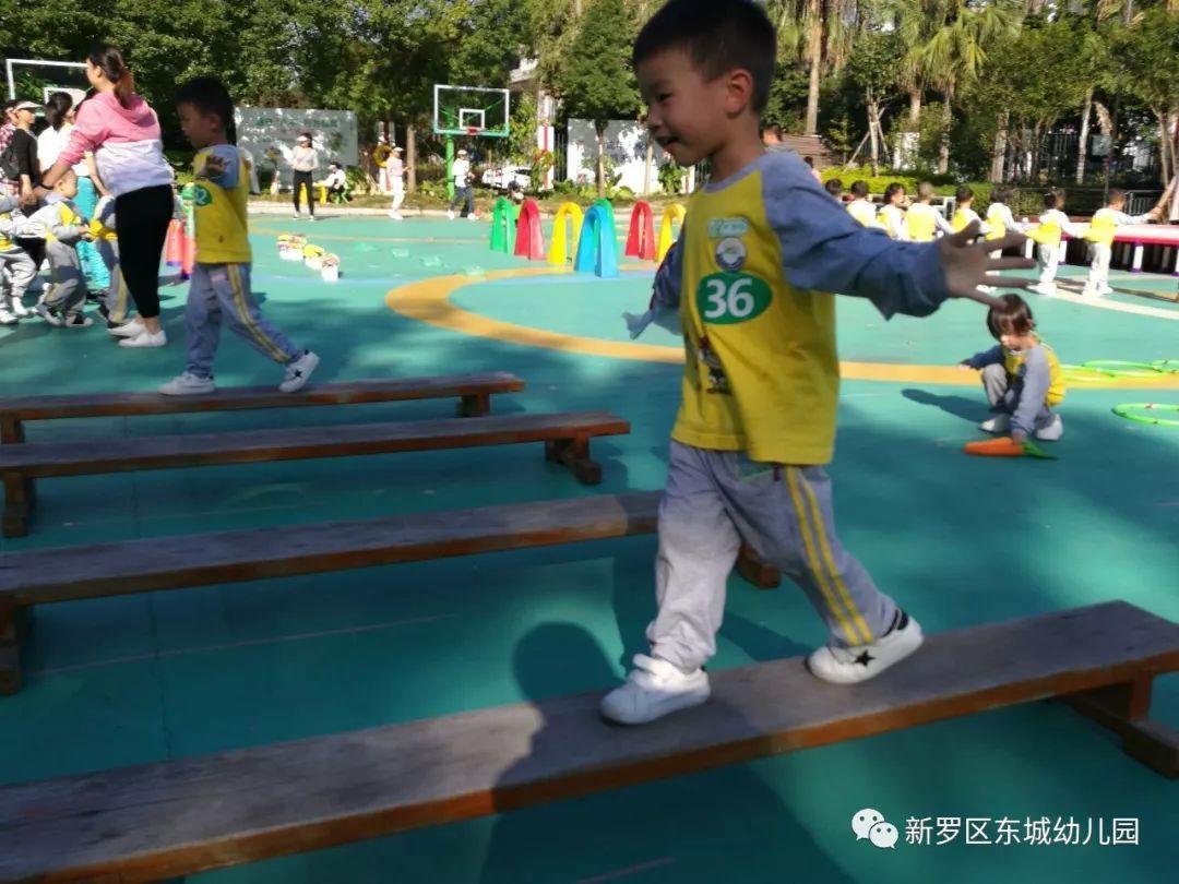 小班体育游戏《小兔拔萝卜》_幼儿园小班游戏教案