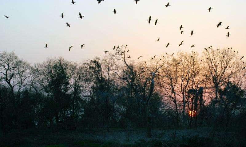 立冬前的最后一个周末,衡阳的这些秋天美景不可错过!
