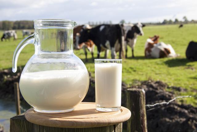 牛奶中全是防腐剂?牛奶有毒致癌?我们到底还能不能喝牛奶了?