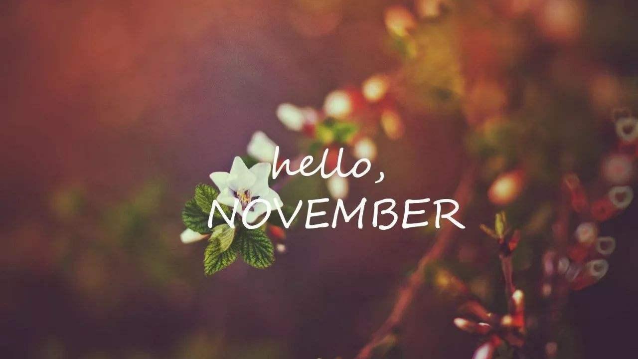 十一月你好致自己