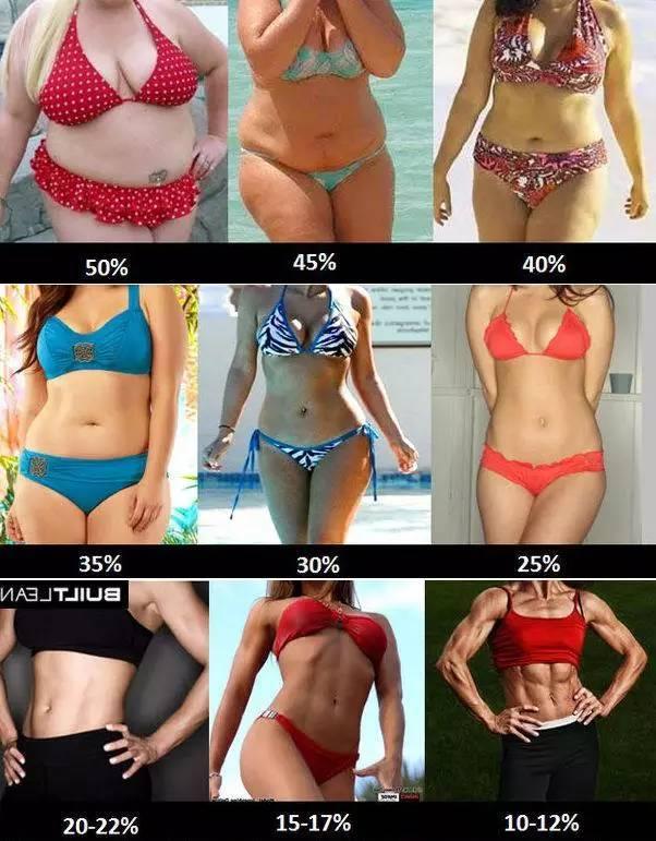 脂肪 体 率 前 生理