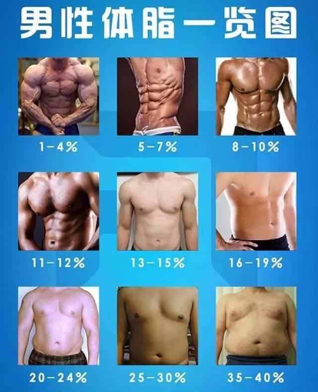 每天做200次卷腹,坚持30天,腹肌会有多大变化?