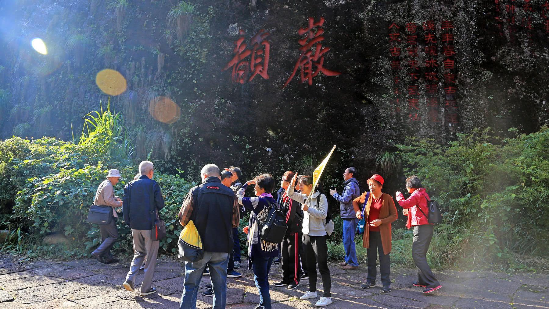 中国身价最高的树,20克20.8万天价,曾重兵把守投保1亿元