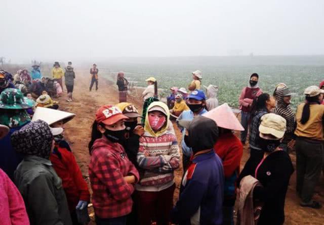 中国人在老挝租地,一年1万租金百万收入,看看他们做了什么? (图1)