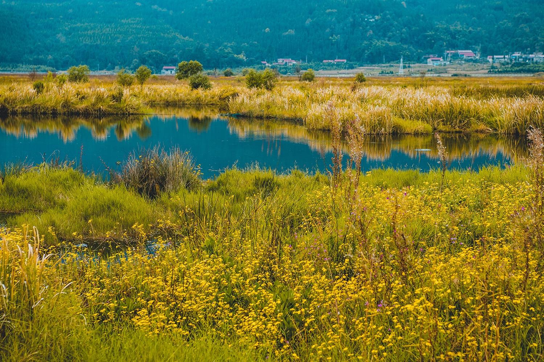 旅游 正文  腾冲北海湿地风景区,位于腾冲县城西北向,距城12.5公里.