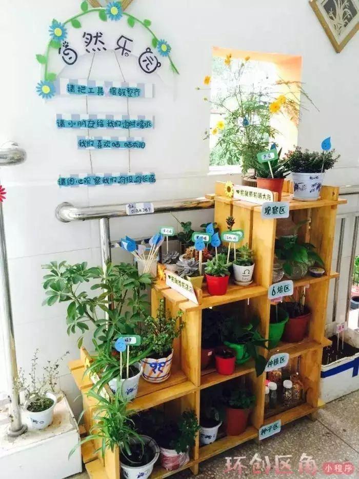 植物区角布置手绘图片