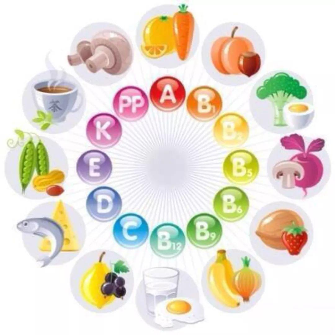 为什么减肥一定不能减营养?