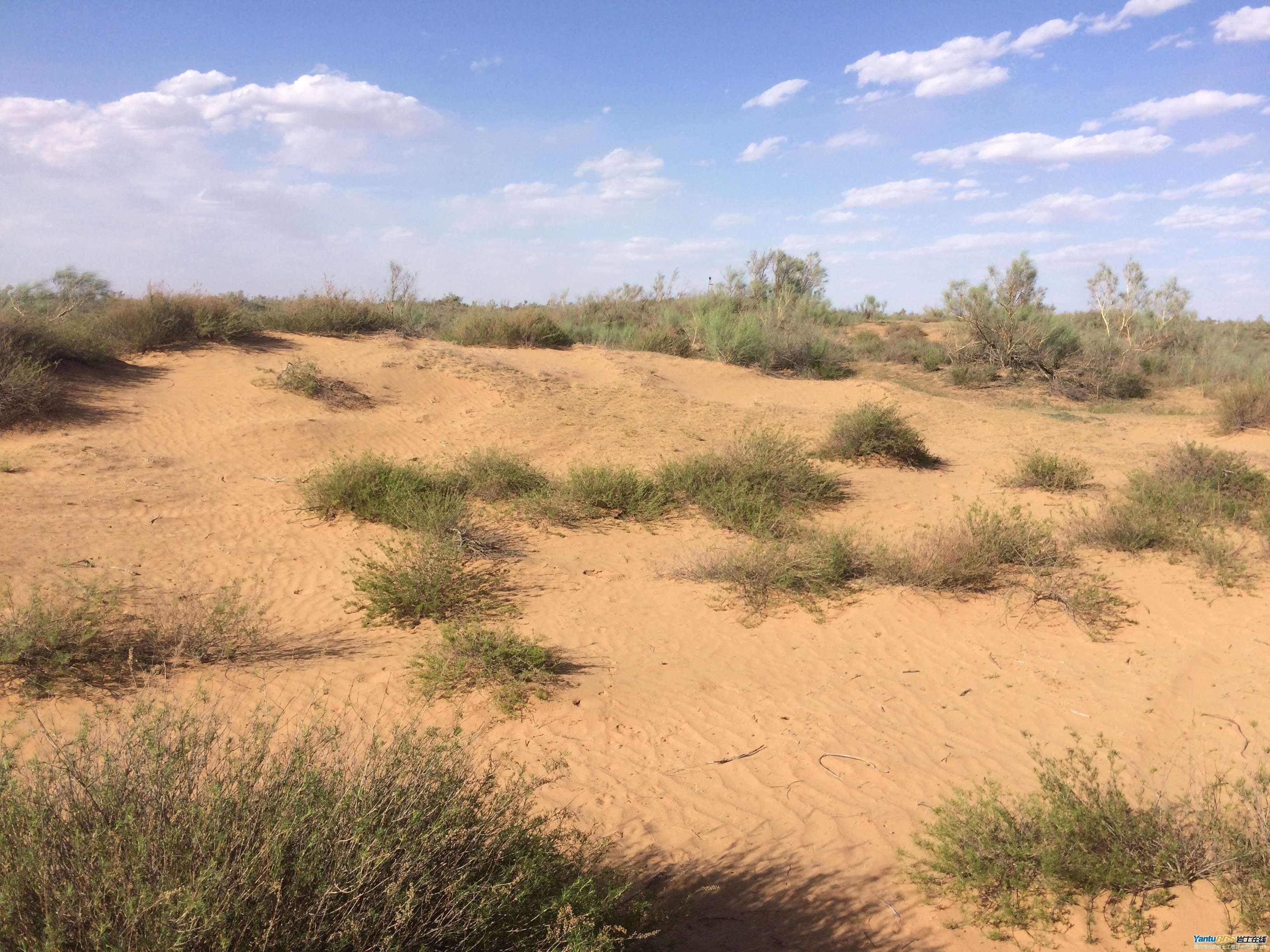 中国第一个将消失的沙漠:面积比海南岛还大,如今80%沙漠成绿洲