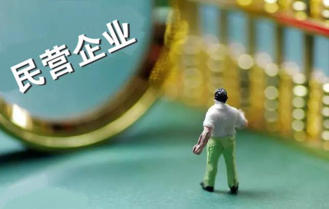 我国民营企业经济总量_民营企业图片