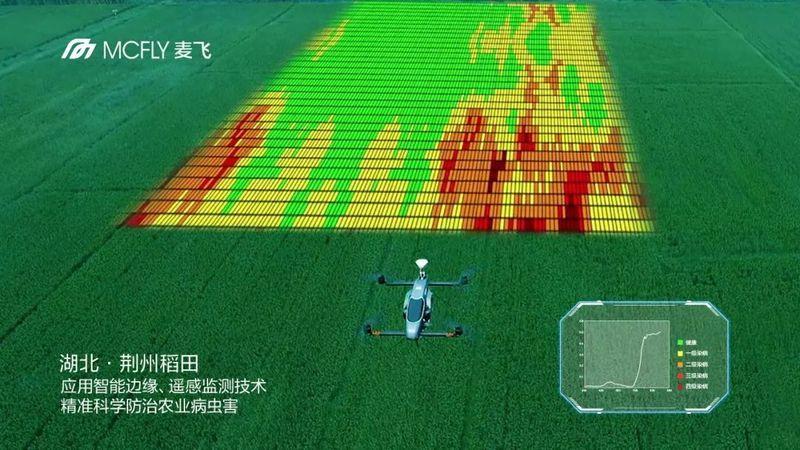 高光谱施药处方图