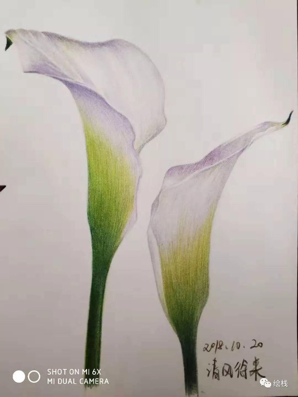《水彩技法100例》《小清新水彩手绘基础1000例》《小清新彩铅手绘