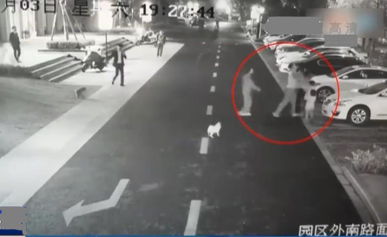 杭州遛狗男打護娃媽媽:母親被騎身暴打,孩子會留下怎樣的心理陰影?