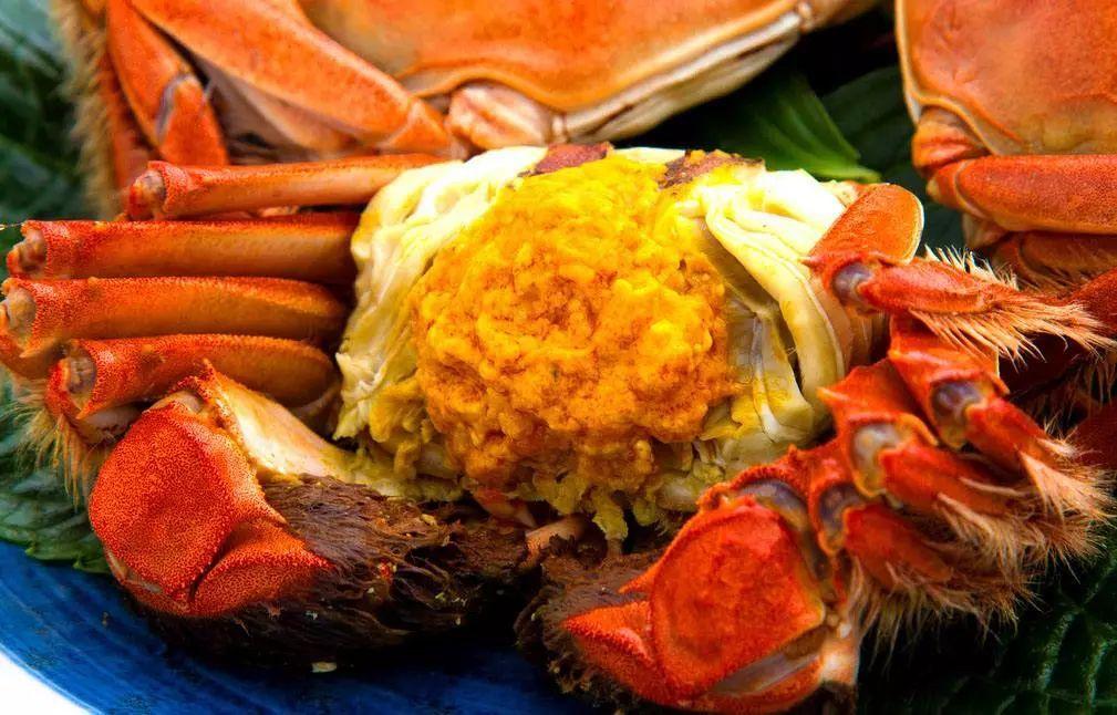大閘蟹在台灣又爆二惡英超標 國內4個產地省皆「有份」