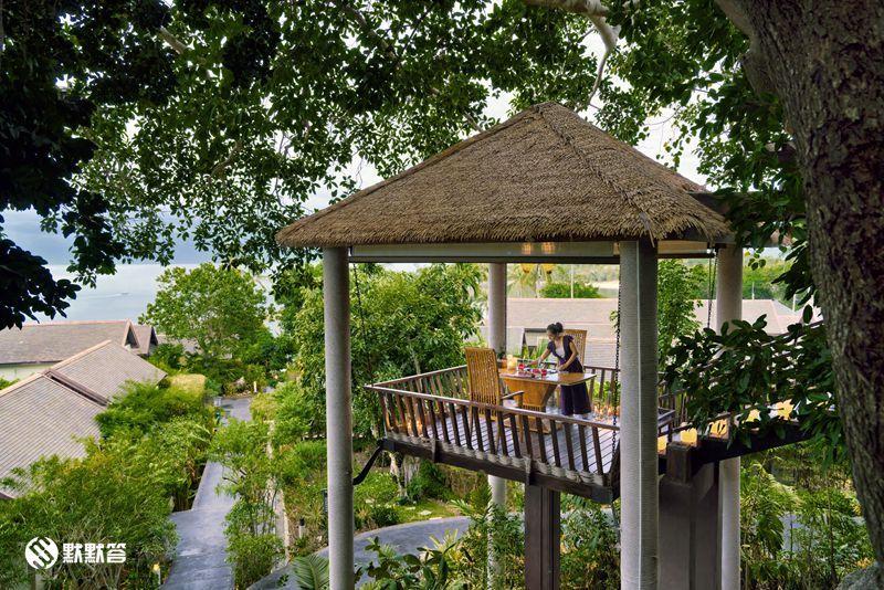 有试过在树顶用餐吗?童话里才有的浪漫场景–苏梅岛树顶餐厅