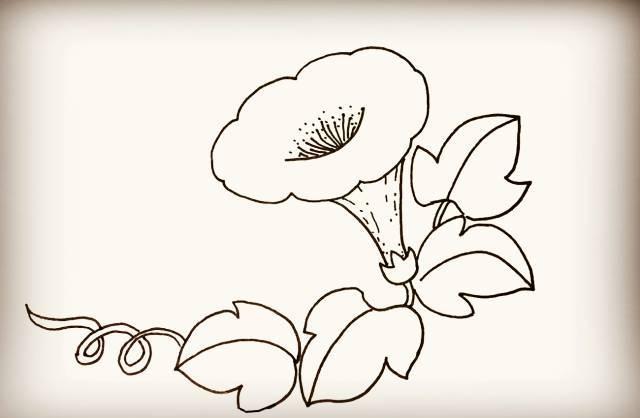 幼儿园简笔画教程:喇叭花上的毛毛虫