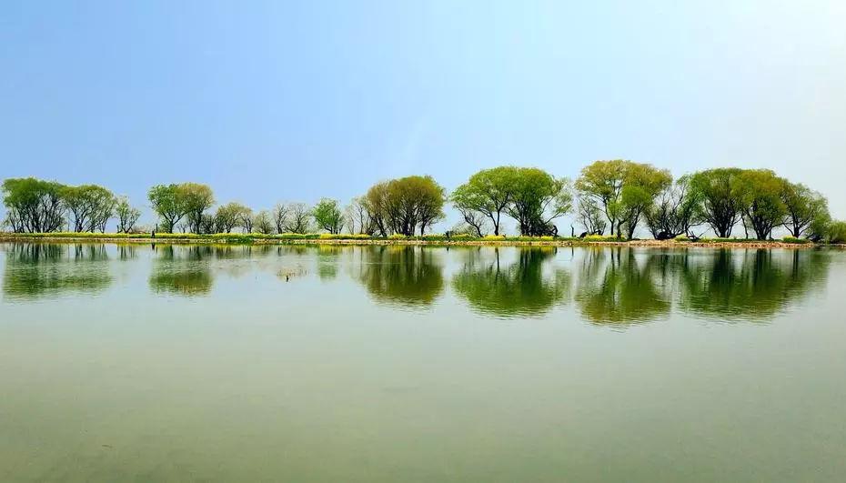 太湖畔182亩生态酒店!湖岸线60公里、森林覆盖率70%、拍风景大片美滋