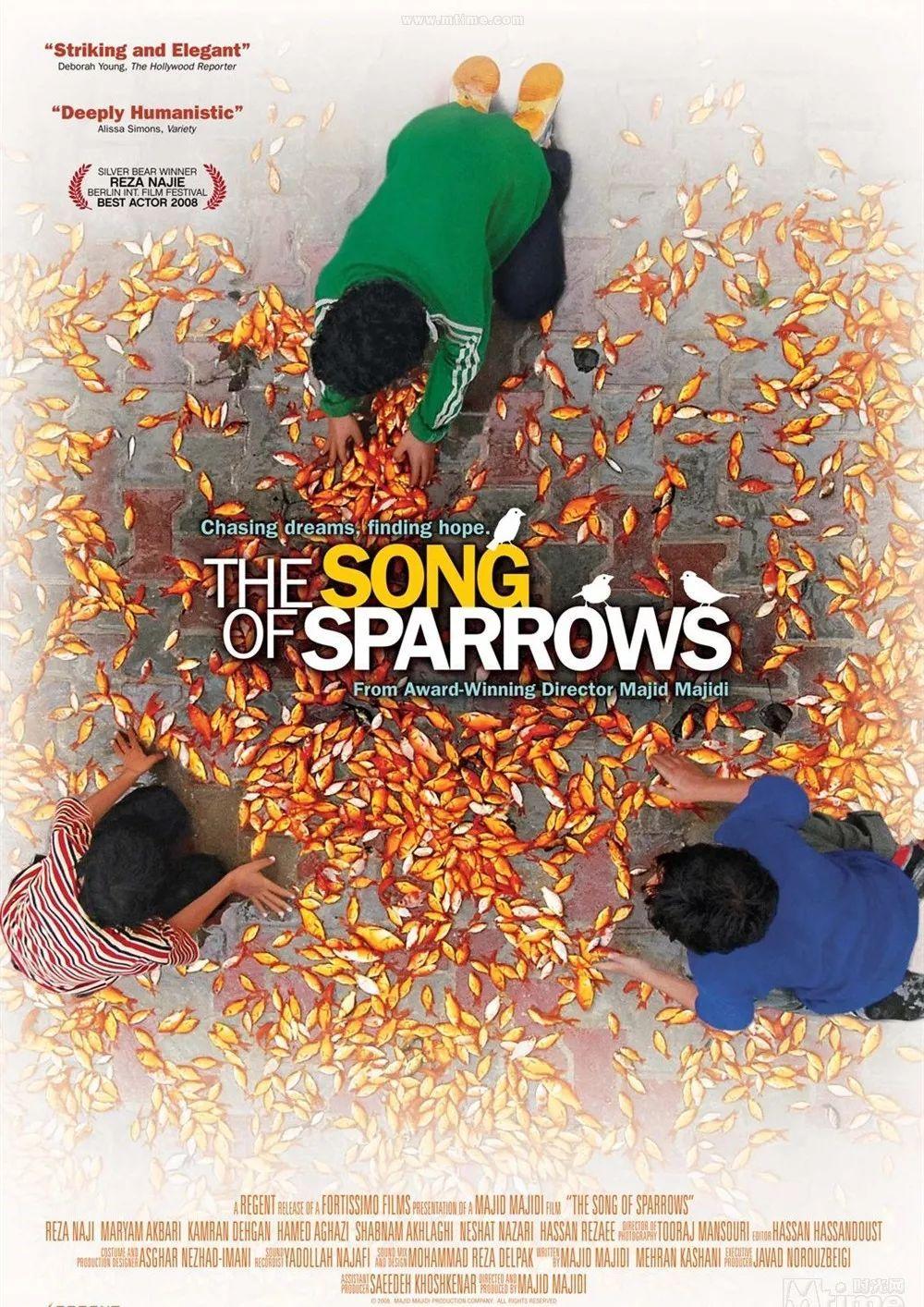 麻雀与小孩(Sparrows And Kids ) - 林海 - 单曲 - 网易云音乐