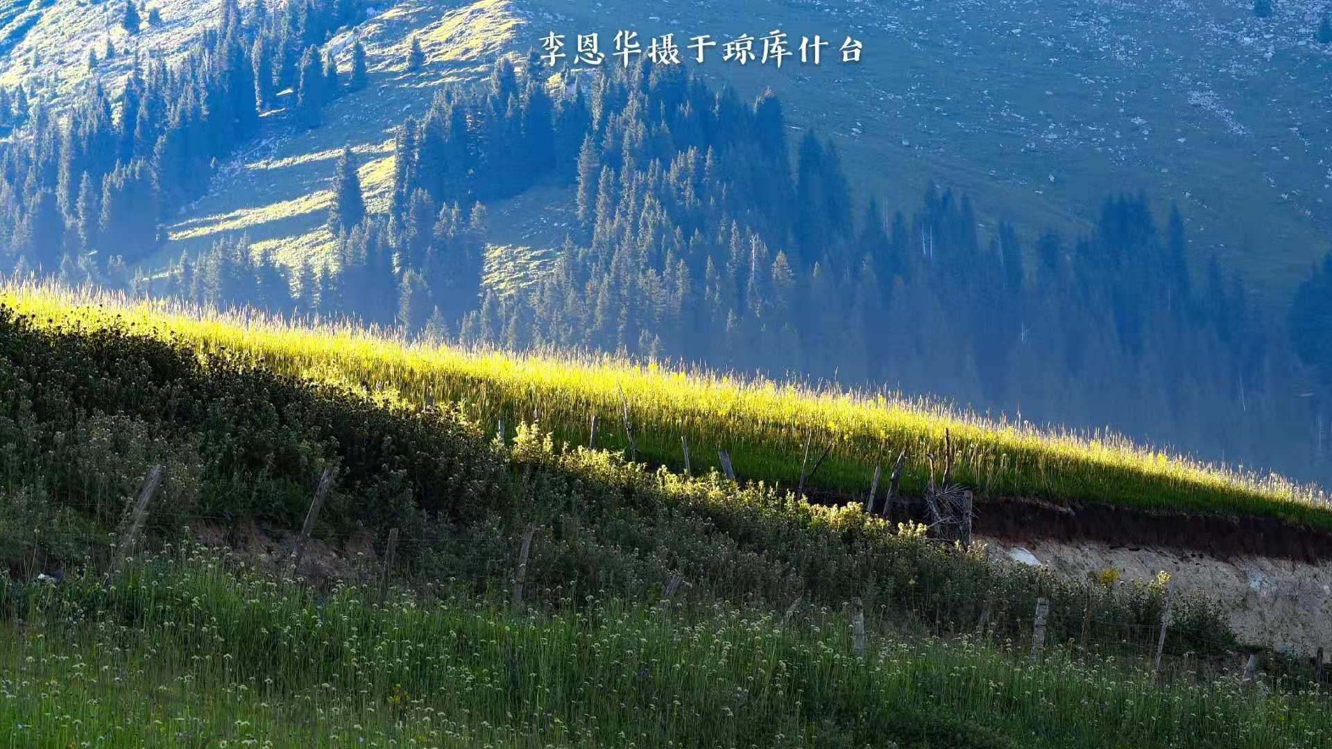 房車游中國:天山腳下的世外桃源,新疆的歷史古村瓊庫什臺