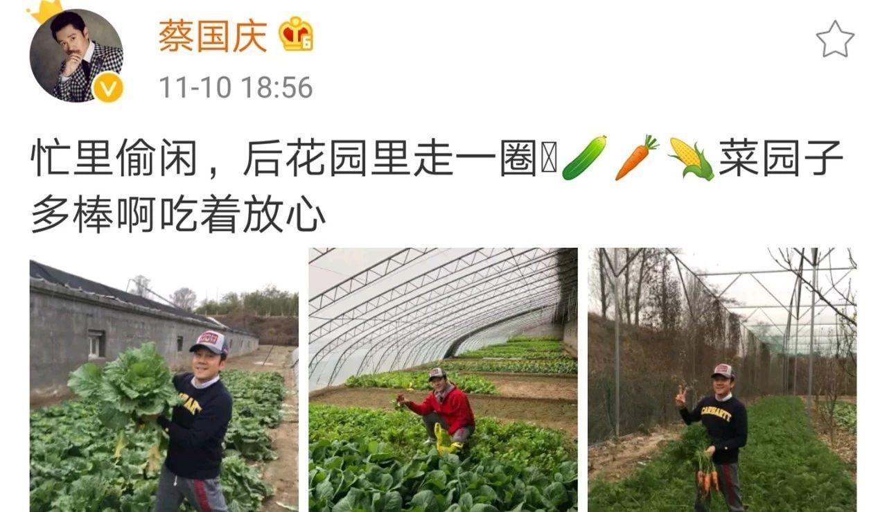 50歲蔡國慶大方曬自家的後花園,網友看完後感慨:真有錢