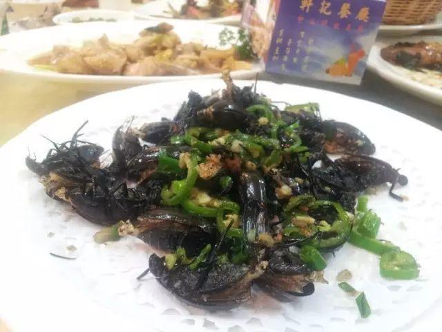 為什么在外省人眼中,廣東人什么都吃?