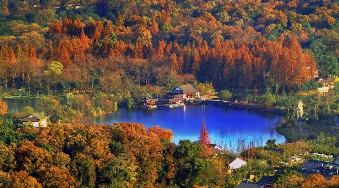 观赏时间:十一月中旬至十二月 观赏对象:水光一色,自然野趣 杭州花圃
