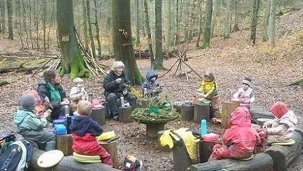解析瑞吉欧与森林教育的结合方式,环境创设与课程设置,参与瑞吉欧教学图片