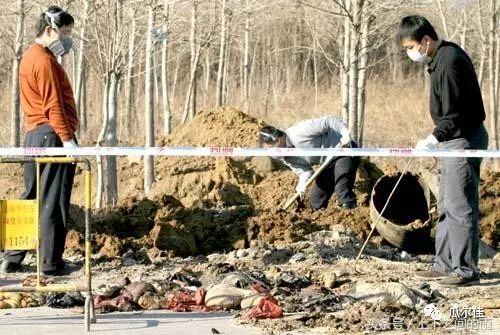中国大案纪实:沈阳15名舞女被杀案