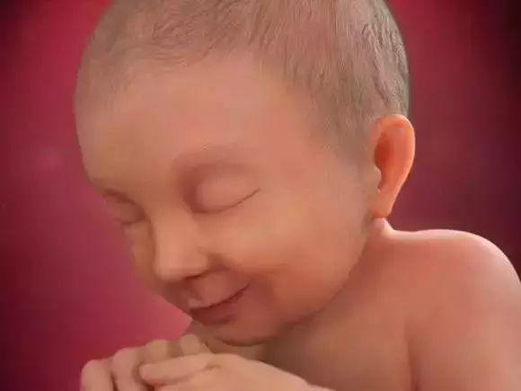 1 40 周胎儿发育全程高清图,原来胎宝这样成长的