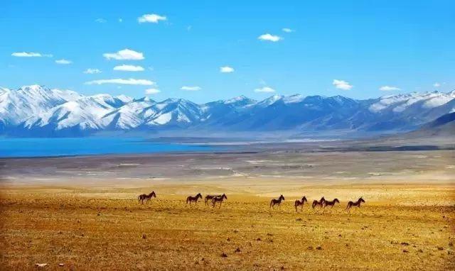为什么那么多人向往西藏游呢?