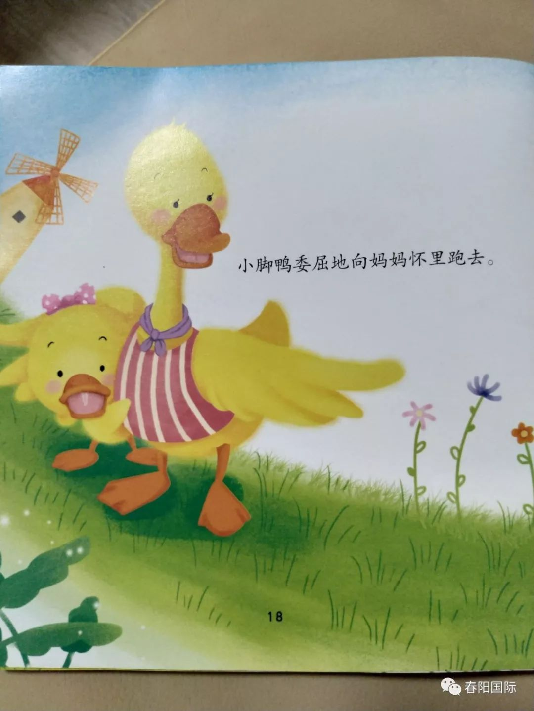 > 小动物的小脚丫有什么不一样_幼儿园综合活动教案:... _360问答