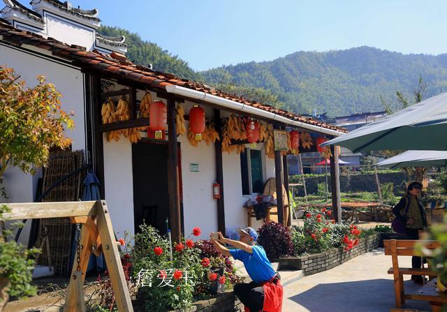 浙江有個唐高宗后裔隱居地,村民曬柿子種紅薯,成為最紅柿子村