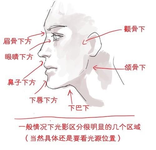 【精品】零基础该怎么学画画?