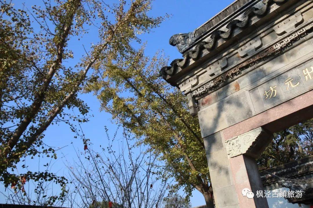 古镇枫泾秋色上新,你该换背景图了!