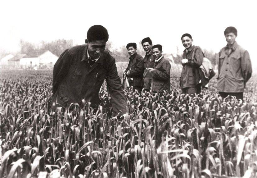 嵩明县改革开放40年大事记(1979-1989)